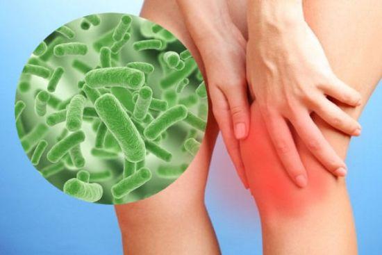 Воспаленное колено, инфекционные возбудители