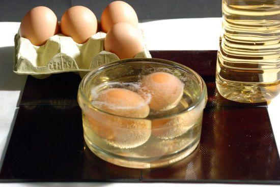 Растворение скорлупы яиц