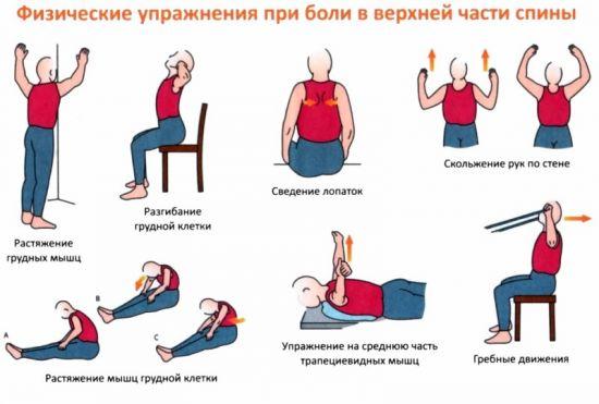 ЛФК для верхней части спины