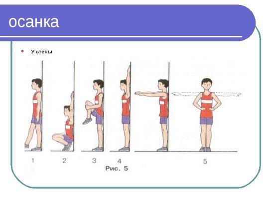 Упражнения для осанки у стены