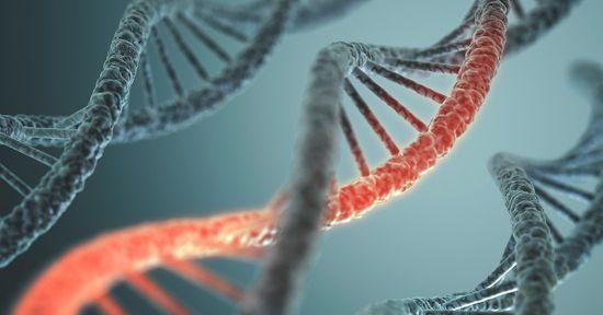 Генетическая спираль