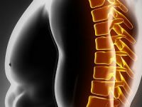 Боль в грудном отделе позвоночника